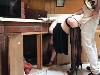 COUGAR stuck in put emphasize kitchen drilled by neighbor (pin)